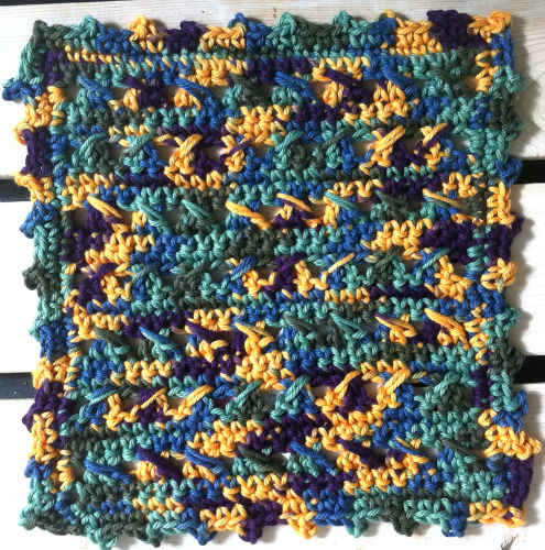 FD038 Two Steps Forward Dishcloth CB_800