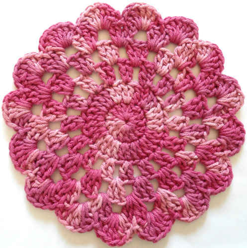 40 Rose In Bloom Crochet Dishcloth Maggie Weldon Maggies Crochet Interesting Best Crochet Dishcloth Pattern